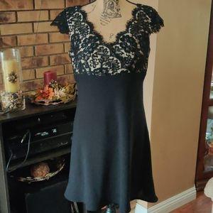Ann Taylor Petite Scallop Lace Dress